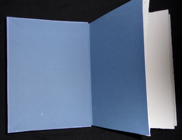 BlueBook.open.jpg