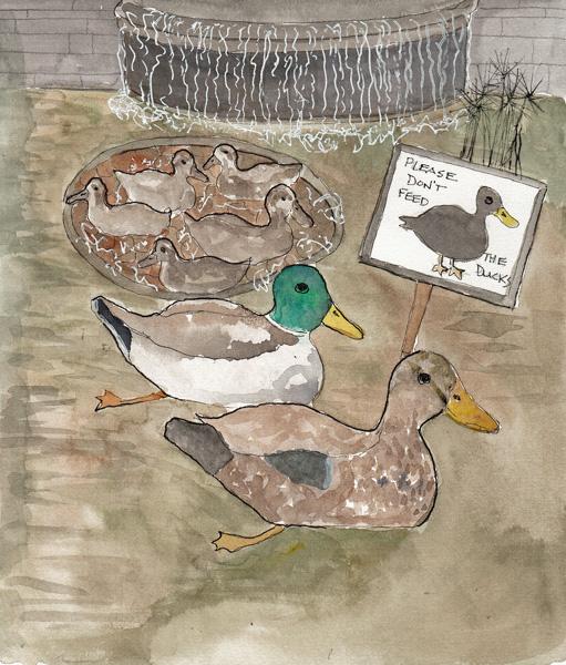 DucksDrawingSIZE.jpg