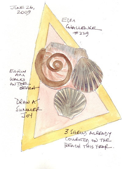 EDM229.shells.jpg