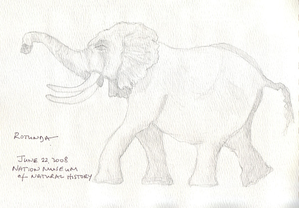 Elephant.RotundaSize.jpg
