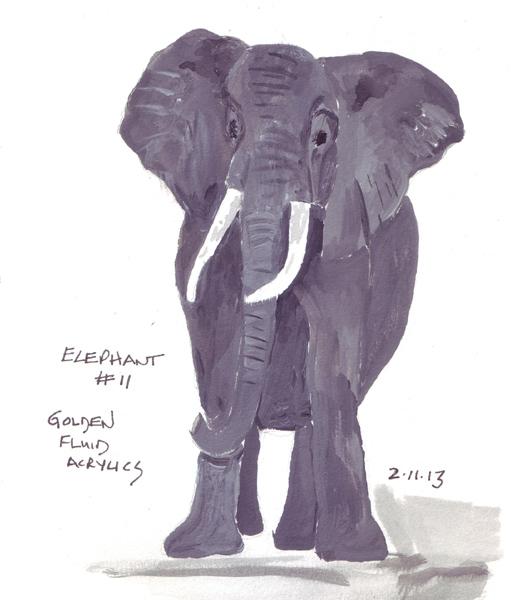 Elephant11.size.jpg