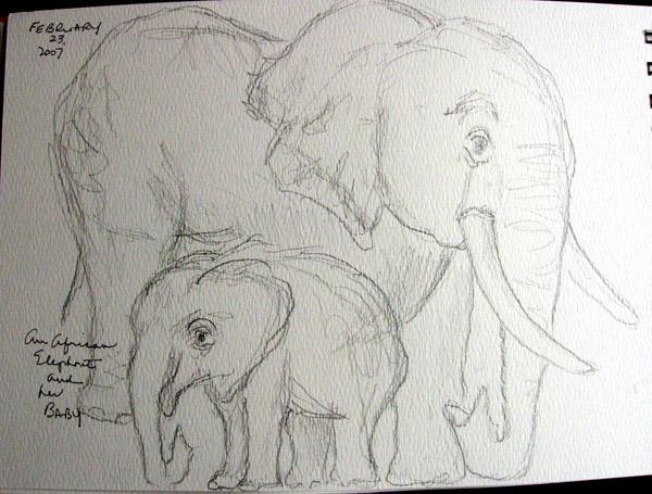 Elephant2.size
