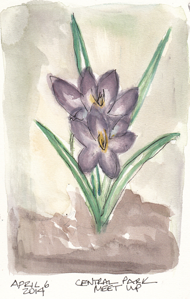 Flower.size.jpg