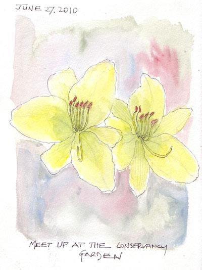 FlowerA.27Jun.jpg