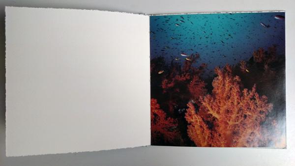 FolioInBook.size.jpg