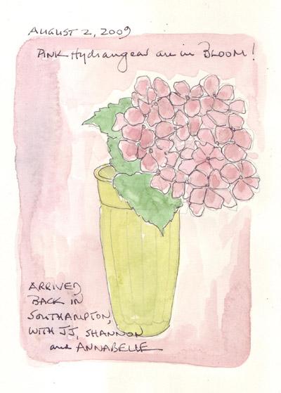 Hydrangeas.Pink.jpg