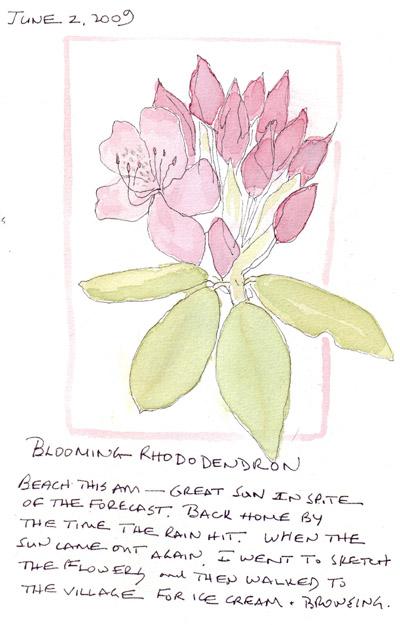 Rhododendron.crop.jpg