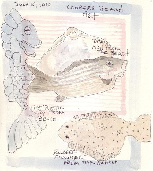 SH.Flounder.jpg