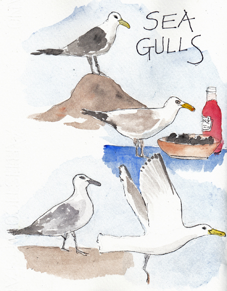 Seagulls1SIZE.jpg