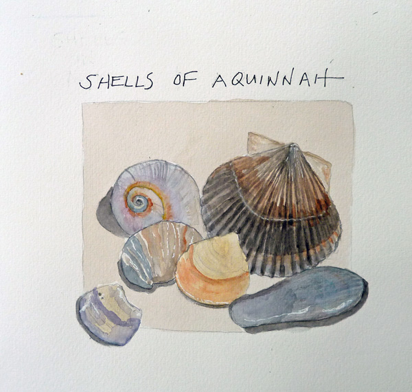 Shells%20of%20Aquinnah.size.jpg