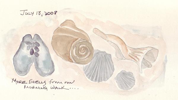 Shells.2.jpg