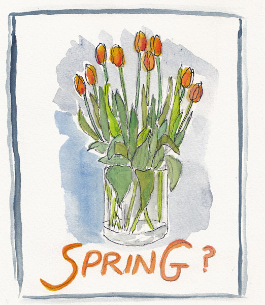 SpringTulips.size.jpg