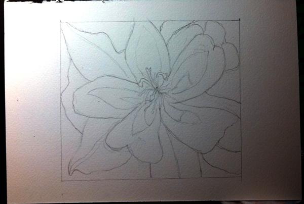 WIP.Flower1.size