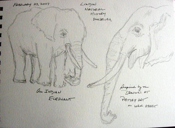 elephant1.size